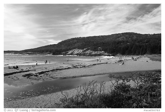 Tidal creek and Sand Beach. Acadia National Park (black and white)