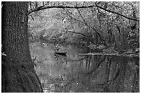 Canoe on Cedar Creek framed by overhanging branch. Congaree National Park, South Carolina, USA. (black and white)