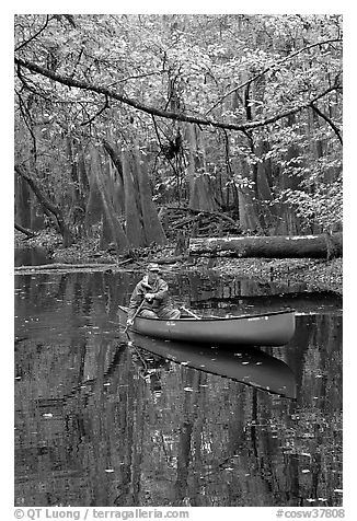 Canoing on Cedar Creek. Congaree National Park (black and white)