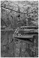Canoing on Cedar Creek. Congaree National Park, South Carolina, USA. (black and white)