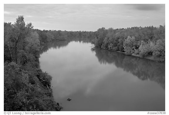 Congaree River at sunset. Congaree National Park (black and white)