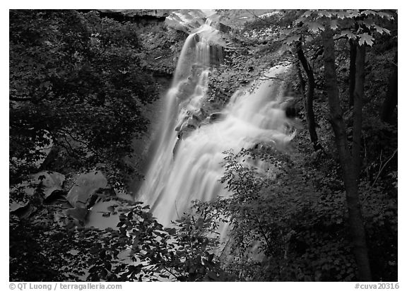 Brandywine falls in forest. Cuyahoga Valley National Park (black and white)