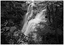 Brandywine falls in forest. Cuyahoga Valley National Park ( black and white)
