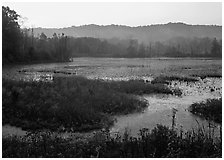 Grasses and Beaver Marsh at sunrise. Cuyahoga Valley National Park, Ohio, USA. (black and white)