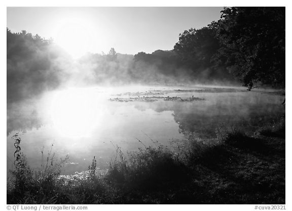 Sun shining through mist, Kendall Lake. Cuyahoga Valley National Park (black and white)