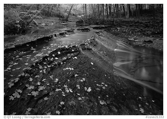 Cascading stream near Bridalveil falls. Cuyahoga Valley National Park (black and white)
