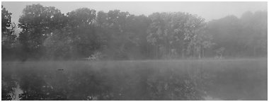 Trees reflected in foggy pond. Cuyahoga Valley National Park (Panoramic black and white)