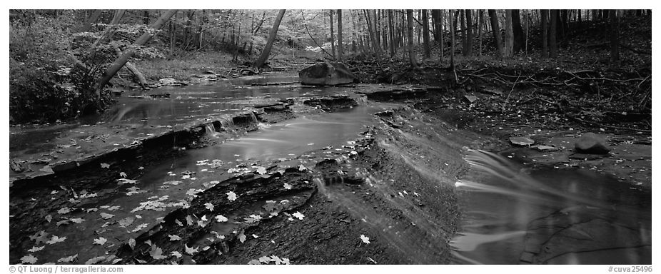 Autumn scene with stream cascading and fallen leaves. Cuyahoga Valley National Park (black and white)