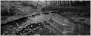 Autumn scene with stream cascading and fallen leaves. Cuyahoga Valley National Park (Panoramic black and white)