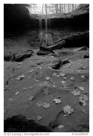 Fallen leaves on gren slabs and Blue Hen Falls. Cuyahoga Valley National Park (black and white)
