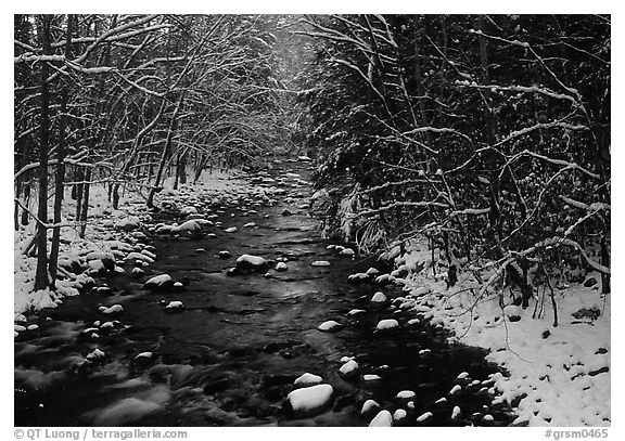 River in snowy forest, Tennessee. Great Smoky Mountains National Park (black and white)
