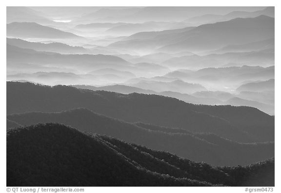 Blue ridges and valley from Clingman's dome, early morning, North Carolina. Great Smoky Mountains National Park (black and white)