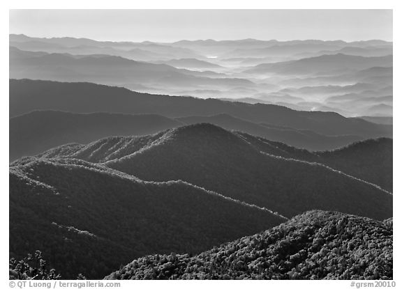 Forested and distant ridges in haze seen from Clingmans Dome, North Carolina. Great Smoky Mountains National Park (black and white)