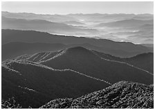 Forested and distant ridges in haze seen from Clingmans Dome, North Carolina. Great Smoky Mountains National Park, USA. (black and white)