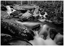 Stream, boulders, and trees, Roaring Fork, Tennessee. Great Smoky Mountains National Park ( black and white)