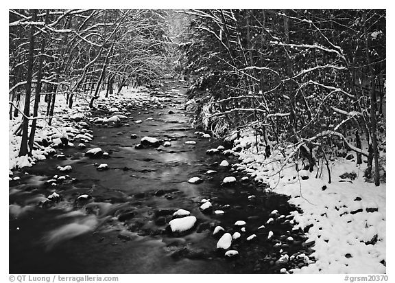 Snowy creek in winter. Great Smoky Mountains National Park (black and white)