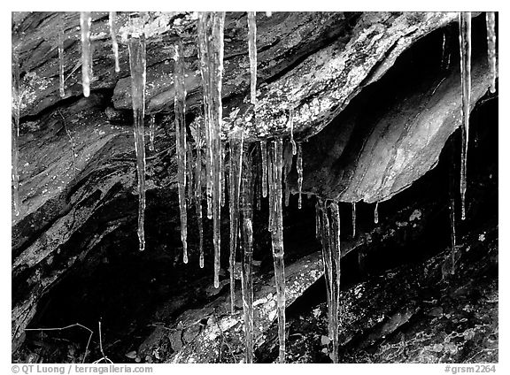 Rock, Icicles and snow, Tennessee. Great Smoky Mountains National Park (black and white)