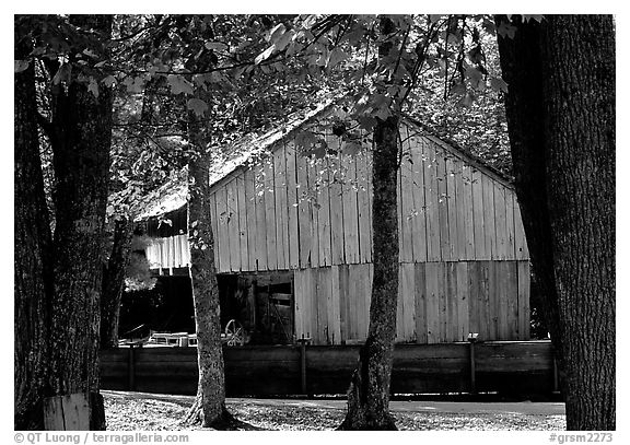 Barn in fall, Cades Cove, Tennessee. Great Smoky Mountains National Park (black and white)