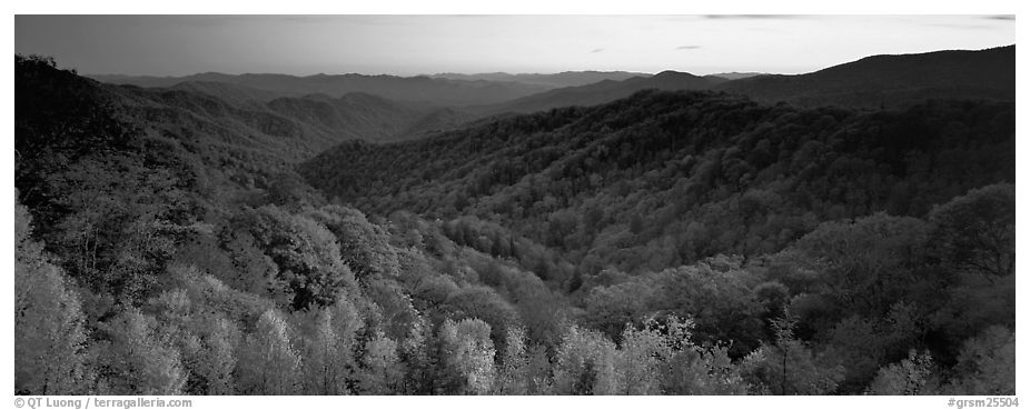 Appalachian autunm landscape of hills with trees in colorful foliage at sunset. Great Smoky Mountains National Park (black and white)