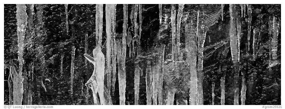 Close-up of icicle formation in winter. Great Smoky Mountains National Park (black and white)