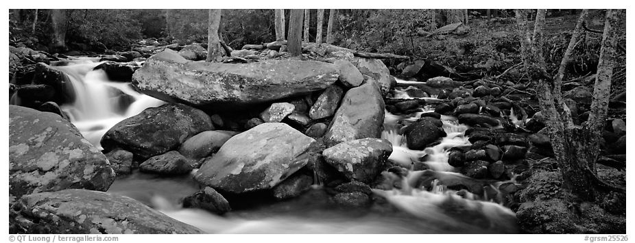 Cascading stream and boulders. Great Smoky Mountains National Park (black and white)