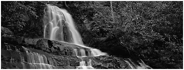 Waterfall in decidous forest. Great Smoky Mountains National Park (Panoramic black and white)