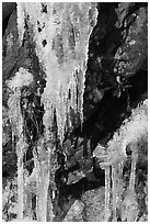 Icicles and rock, overnight frost, North Carolina. Great Smoky Mountains National Park, USA. (black and white)