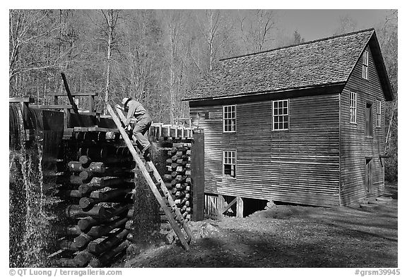 Miller climbing onto millrace, Mingus Mill, North Carolina. Great Smoky Mountains National Park (black and white)