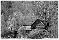 Historic log building, Mountain Farm Museum, North Carolina. Great Smoky Mountains National Park, USA. (black and white)