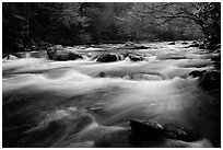 Little River flow, Tennessee. Great Smoky Mountains National Park ( black and white)