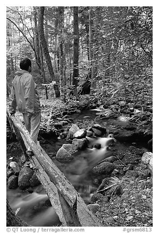 Hiker on tiny footbrige above stream, Tennessee. Great Smoky Mountains National Park (black and white)