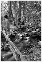 Hiker on tiny footbrige above stream, Tennessee. Great Smoky Mountains National Park, USA. (black and white)