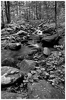 Mossy boulders and Cosby Creek, Tennessee. Great Smoky Mountains National Park, USA. (black and white)