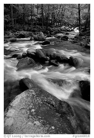 Boulders in confluence of rivers, Greenbrier, Tennessee. Great Smoky Mountains National Park (black and white)
