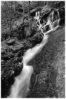 Small cascading stream, Treemont, Tennessee. Great Smoky Mountains National Park, USA. (black and white)
