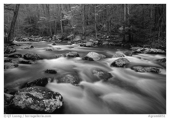 Water flowing over boulders in the spring, Treemont, Tennessee. Great Smoky Mountains National Park (black and white)