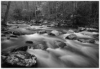Water flowing over boulders in the spring, Treemont, Tennessee. Great Smoky Mountains National Park ( black and white)