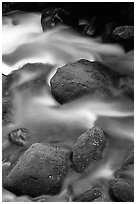 Mossy boulders and silky water, Roaring Fork River, Tennessee. Great Smoky Mountains National Park, USA. (black and white)