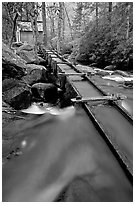 Flume to Reagan's Mill from Roaring Fork River, Tennessee. Great Smoky Mountains National Park, USA. (black and white)