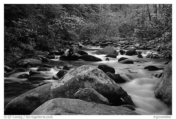 River cascading along mossy boulders, Roaring Fork, Tennessee. Great Smoky Mountains National Park (black and white)