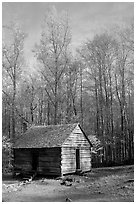 Historic log Cabin, Roaring Fork, Tennessee. Great Smoky Mountains National Park, USA. (black and white)