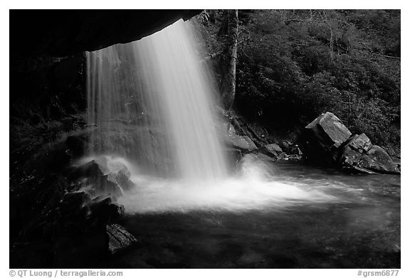 Grotto falls from behind, evening, Tennessee. Great Smoky Mountains National Park (black and white)