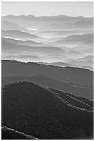 Hazy Ridges seen from Clingmans Dome, North Carolina. Great Smoky Mountains National Park ( black and white)