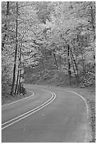 Road curve and fall colors on West Mountain. Hot Springs National Park, Arkansas, USA. (black and white)