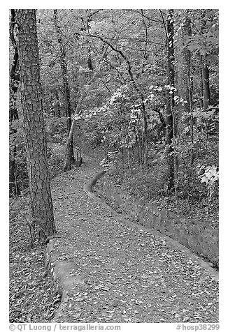 Built trail and fall colors, Hot Spring Mountain. Hot Springs National Park (black and white)