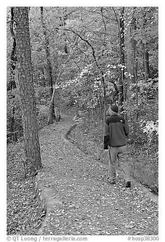 Hiker on trail amongst fall colors, Hot Spring Mountain. Hot Springs National Park (black and white)