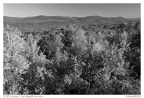 Vista with trees in fall colors, North Mountain, early morning. Hot Springs National Park (black and white)
