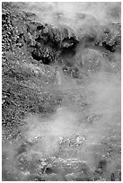 Steam rising from hot water cascade. Hot Springs National Park, Arkansas, USA. (black and white)