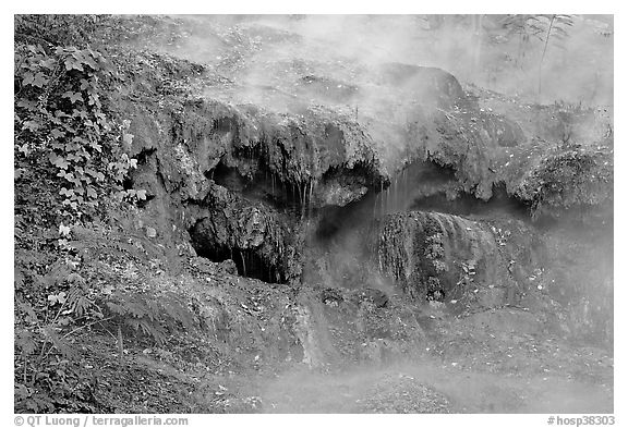 Steam and tufa terrace. Hot Springs National Park (black and white)