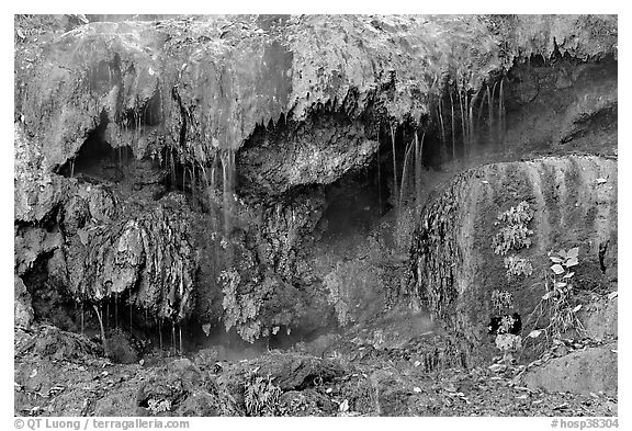 Hot water flowing over tufa terrace. Hot Springs National Park (black and white)